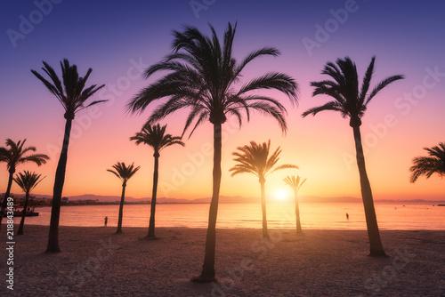 sylwetki-drzew-palmowych-przeciwko-kolorowe