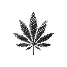 Cannabis Vector Icon