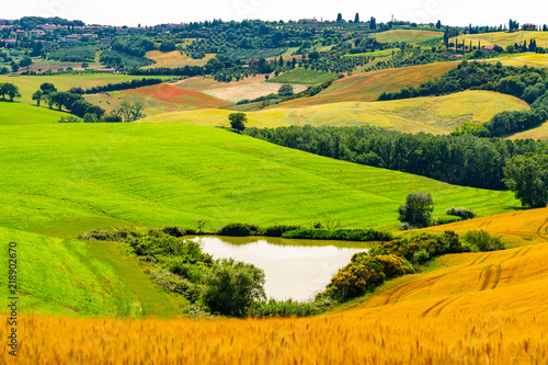 Beautiful landscape of hilly Tuscany with wheat field, vineyard and water reservoir in Valdorcia, Italy