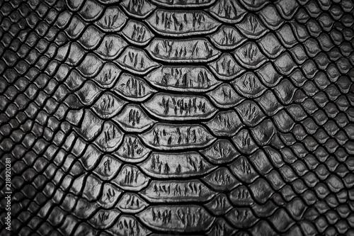 Foto auf Leinwand Crocodile Black snake skin pattern texture