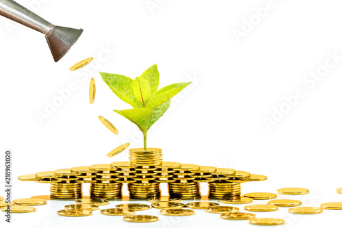 Watering can of coin pouring drop to a stack gold coin and seed plant growing value with savings put white background, Business investment or loan as working capital management for asset concept Canvas Print