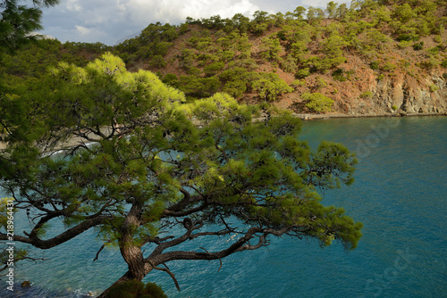Spoed Foto op Canvas Turkoois view of the bay and the beach, the Mediterranean Sea, Turkey