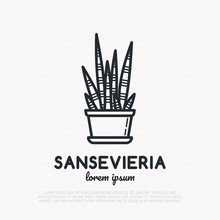 Succulent Sansevieria In Pot Thin Line Icon. Modern Vector Illustration Of Home Plant.