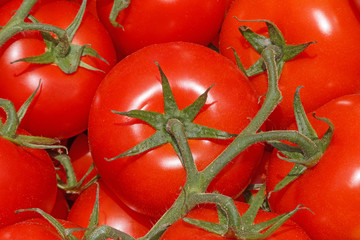 close up of red tomatoes on market