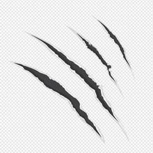 Claw Scrathes Vector