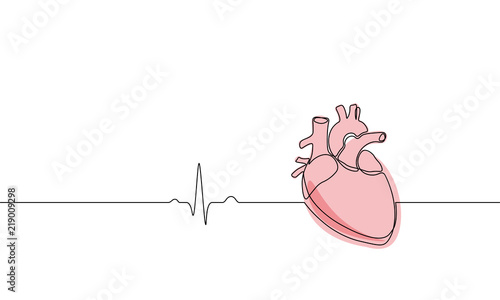 Fotografie, Obraz Single continuous line art anatomical human heart silhouette