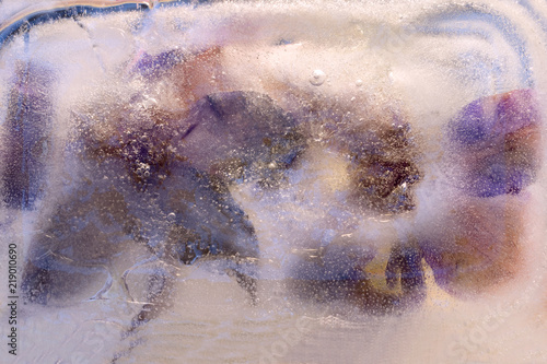 Photo sur Toile Papillons dans Grunge Background of clematis flower frozen in ice