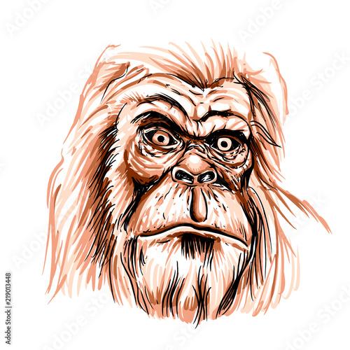 Photo  Bigfoot face cartoon illustration