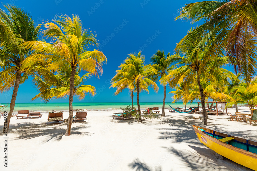 Fototapeta Tropical beach setting on Isla Holbox, Mexico