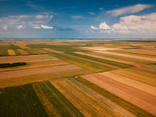 Drone Photography Of Cultivate...