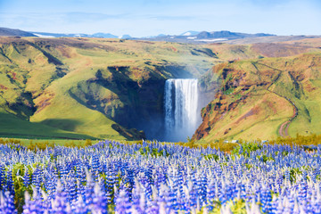 Fototapeta Wodospad Famous Skogafoss waterfall on Skoga river. Iceland, Europe
