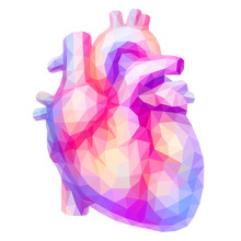 Colorful Human Heart In Low Poly