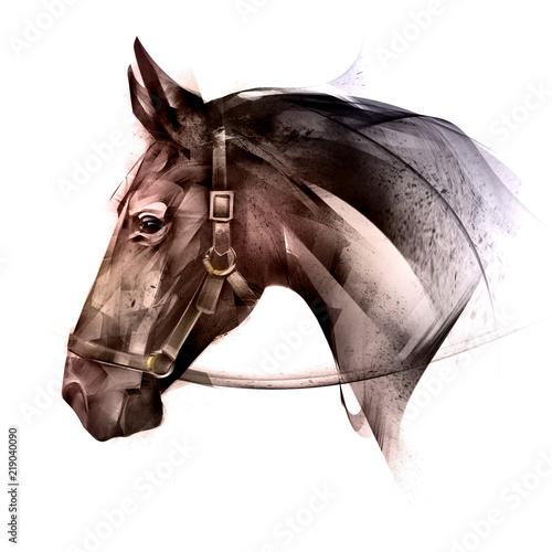 pomalowane na kolor zwierzęcej strony konia