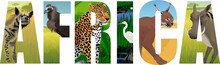 Vector Africa Illustration With Leopard, Vulture, Great White Heron, Striped Hyena, Caracal And Common Warthog