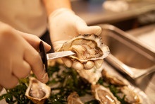 Chef Shuck Fresh Oysters With ...