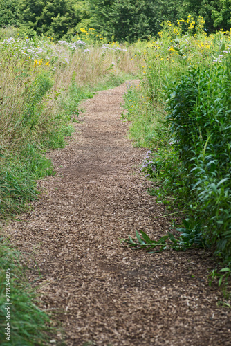 Valokuva  Wood chip trail in the National Wildlife sanctuary park.