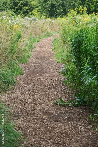 Fotografia, Obraz  Wood chip trail in the National Wildlife sanctuary park.