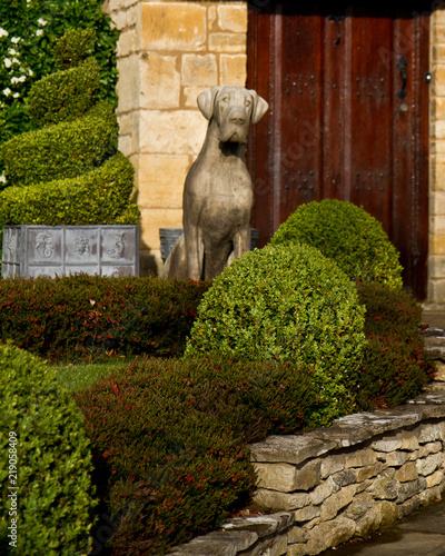 Photographie Stone gaurd dog statue in the garden is of an English cottage