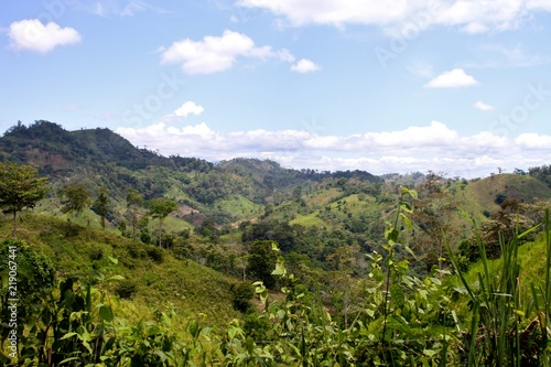 Foto op Aluminium Landschappen Brazilian Countryside