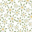 seamless edelweiss flower background