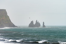 Three Atlantic Puffins Circle The Sea Above The Black Sand Beaches Of Vik, With The Reynisdrangar Sea Stacks In The Background On A Misty Summer Day.