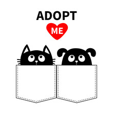 Adopt Me. Dont Buy. Dog Cat In The Pocket. Pet Adoption. Puppy Pooch Kitty Cat Looking Up To Red Heart. Flat Design. Help Homeless Animal Concept. White Background. Isolated.