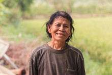 Asian Farmer In Rice Field.