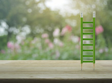 Green Pencil Ladder On Wooden ...