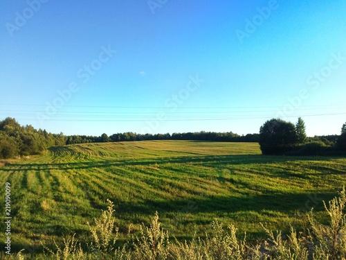 Foto op Aluminium Blauw field