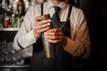 Professional Male Bartender Ho...