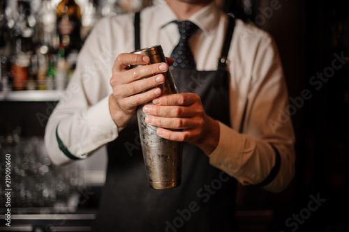 Canvas Print Professional male bartender holding a steel shaker