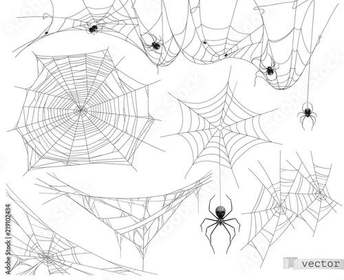 Photo Spider web, vector set of elements
