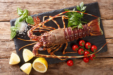 Raw Spiny Lobster With Tomato,...