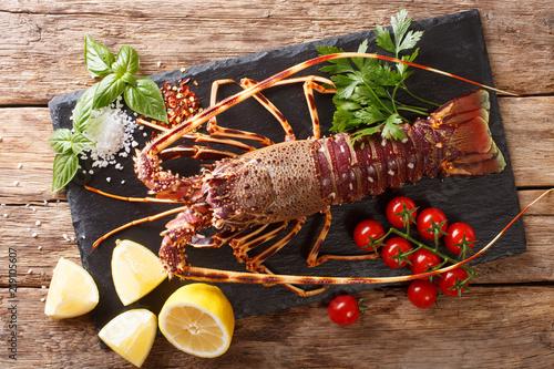 Surowy spiny homar z pomidorem, cytryną i ziele, zamykamy up na czarnej desce. Poziomy widok z góry