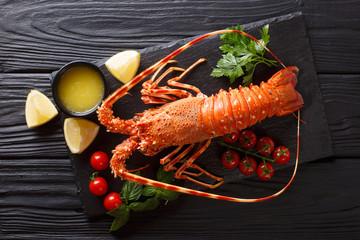 Drogie jedzenie: kolczasty gotowany homar ze świeżym pomidorem, cytryną i stopionym masłem z bliska na czarnym kamieniu. Widok poziomy z góry