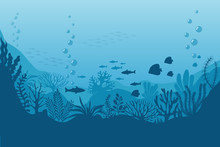 Sea Underwater Background. Oce...
