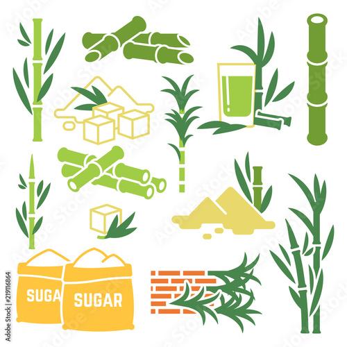 Fotografie, Obraz  Sugar cane, sugarcane plant harvest vector icons isolated on white background