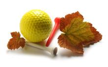 Golf                          ...