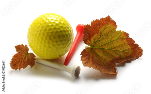 Golf                                                               ft81071279 Canvas-taulu