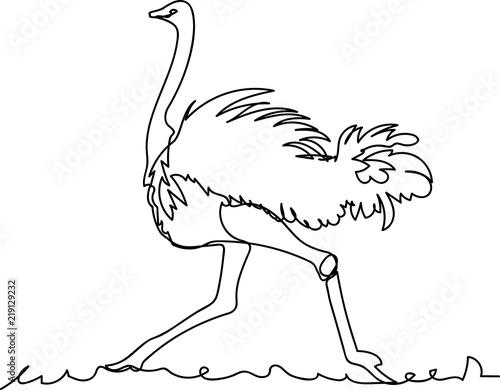 Fotomural ostrich. Doodle. continuous sketch. one line