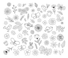 Doodle Flowers, Birds, Butterflies. Cute Hand Drawn Floral Illustrations. Vector Design Elements.