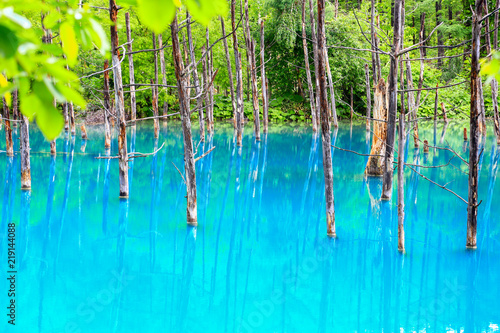 Photo Stands Turquoise Blue pond