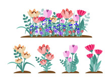 Early Spring Forest And Garden Flowers Isolated On White Vector Set. Illustration Of Nature Flower Spring And Summer In Garden, Vector Illustration.