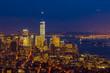 New York Downtown Skyline After Dark