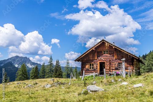 Slika na platnu Almhütte in den Bergen: Bäume, grüne Wiese und blauer Himmel