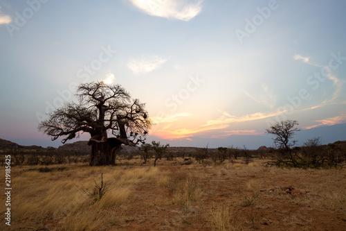 In de dag Bleke violet landscape of africa in the sunset