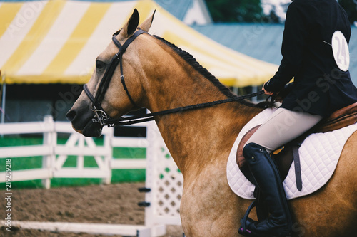 Girl riding English on horse in show arena.