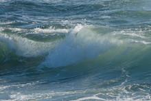 Clear Ocean Wave In Sunlight