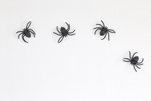 Halloween Black Spiders On Wall
