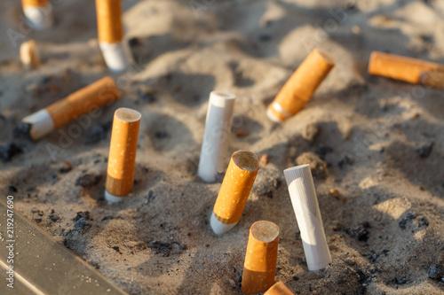 Fotografie, Obraz  Mégots de cigarettes dans un cendrier avec du sable